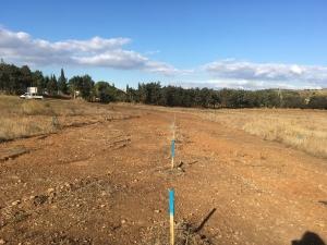SM Aménagement - Terrains à bâtir aux Amarats